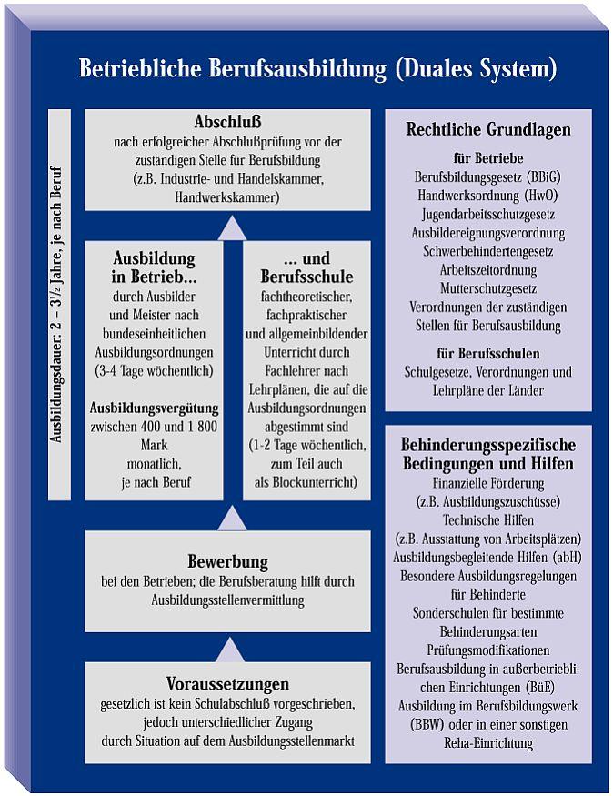 Die betriebliche Berufsausbildung im Dualen System in einer grafischen Darstellung. Vom Schulabschluß bis bis zur Bewerbung.